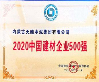 2020中国建材企业500强