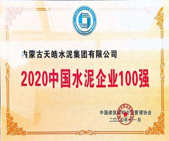 2020中国水泥企业100强
